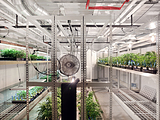 PortaFab Cultivation Room - Clone Room