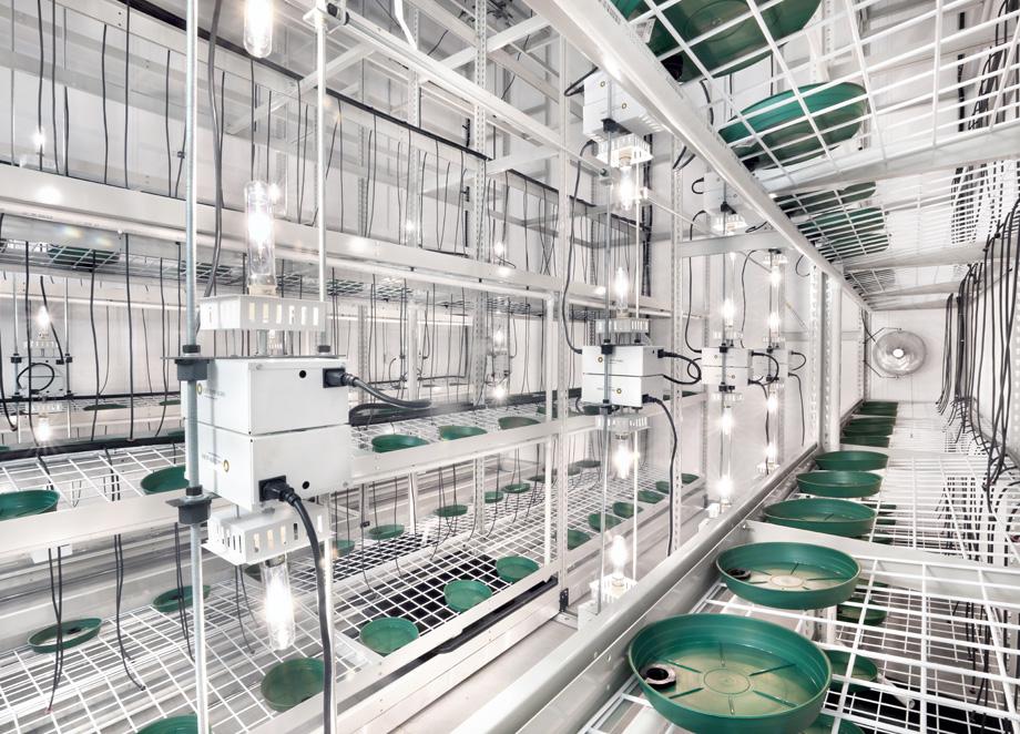 Portafab Modular Cannabis Cultivation Rooms Amp Cannabis