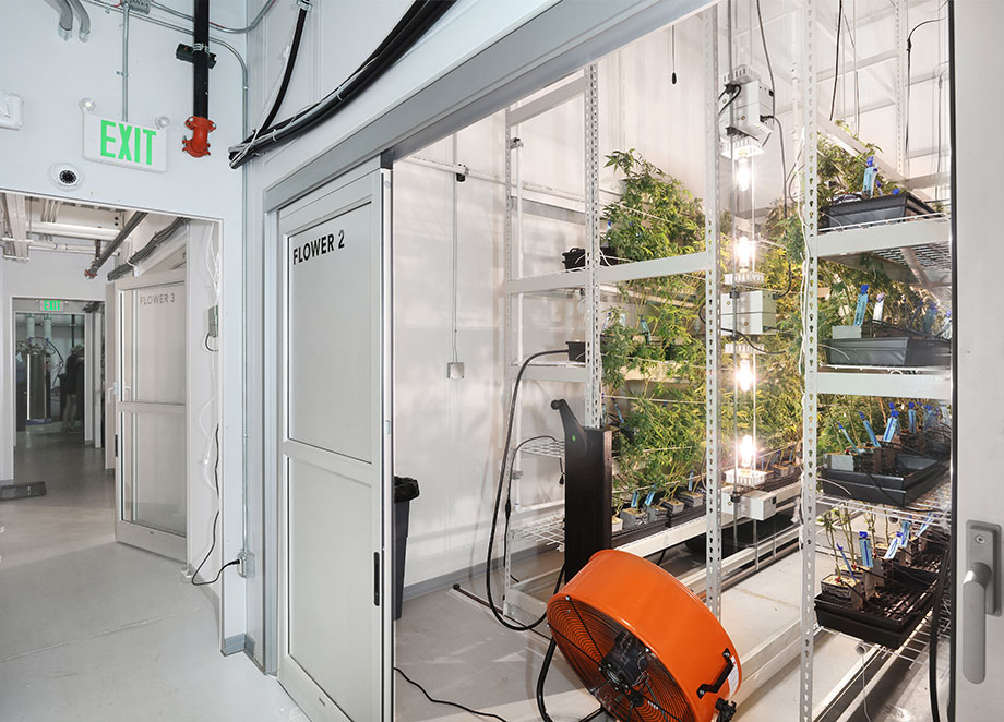 PortaFab | Modular Cannabis Cultivation Rooms & Cannabis
